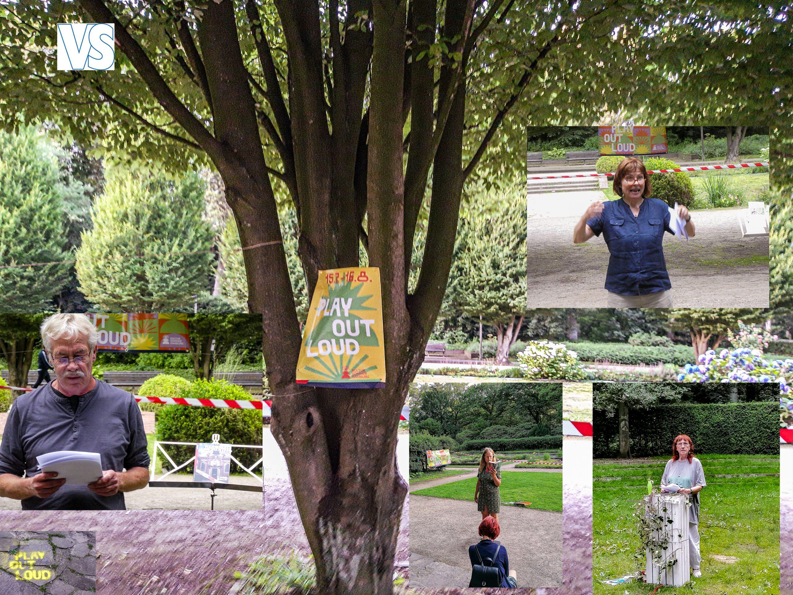 Bild30 collage Plakat Baum 96 fix